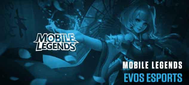 Kenalan dengan EVOS Esports