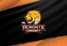 ML Acinonyx Community